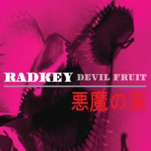 radkey-500x500